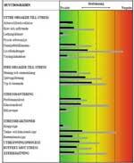 Stressprofil-stresshantering-arbetslagsutveckling-Barbro-Bronsberg